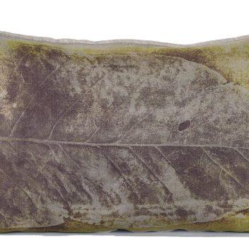Droe Blaar Cushion Print