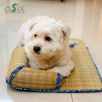 aSix - Pet Products