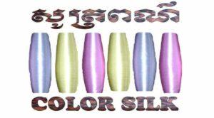 Color Silk - Logo